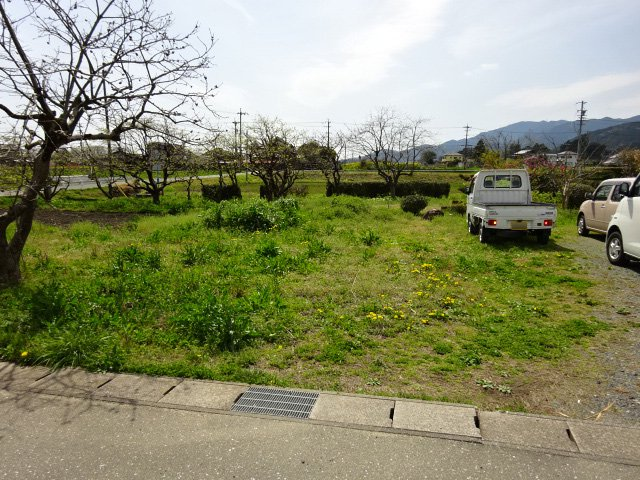 雑草だらけの駐車場